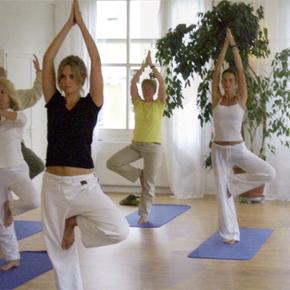 Yoga:  Studium der Stille