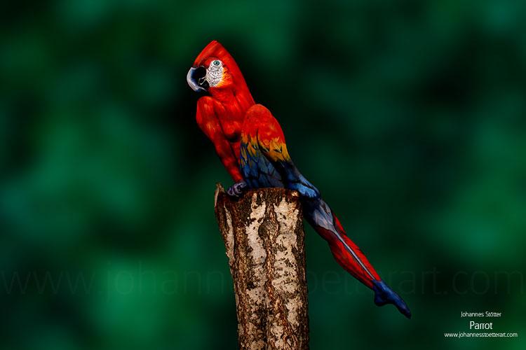 Bodypainting auf Frau: Parrot von Johannes Stötter