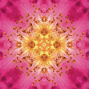 imagami-Meditationen